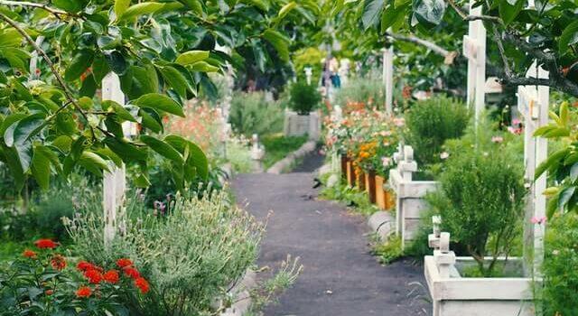 Gebruik van duo palissades in jouw tuin